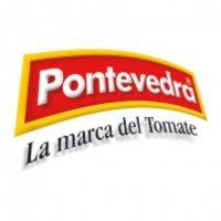 Logo Pontevedra WEB